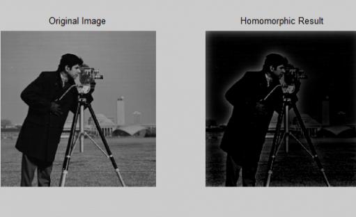 دانلود رایگان پروژه پردازش تصویر در متلب – فیلتر همومورفیک