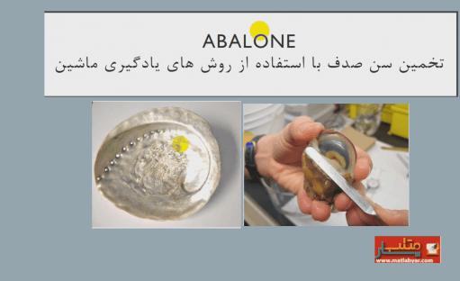 فیلم آموزش پروژه پیش بینی سن آبالون در متلب – Age of an abalone